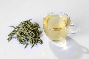 女人喝白茶的好处