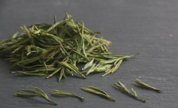 安吉白茶是发酵茶吗
